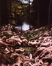 spencer tunick 2004 pensylvania