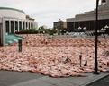 spencer tunick montreal