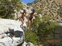 nudist adventures 50179812223 the naked beach www nakedbeach us