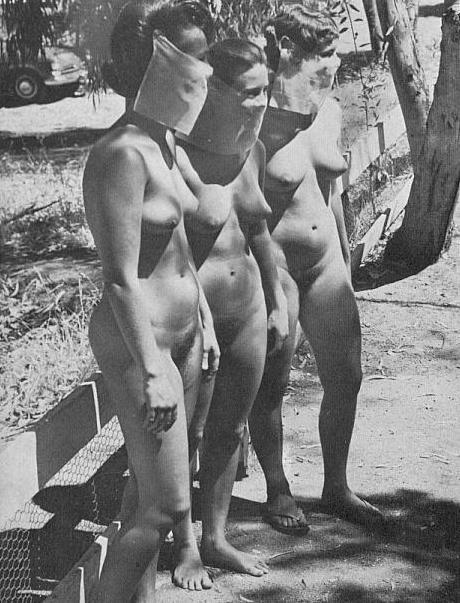 Imgsru Pre Junior Girl Nudists | adanih.com